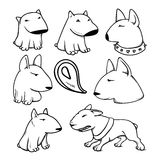 Dogs characters pitbull. Funny animals cartoon. Doodle dog. Sticker dog pitbull. Funny character dogs. Set dog isolated pitbull Stock Photos