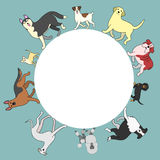 Dogs circle frame with copy space Stock Photo