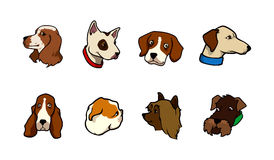 Dogs collection Stock Images
