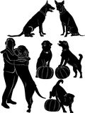 Dogs collection silhouette. Black animal Stock Images