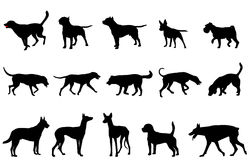 Dogs collection silhouettes Royalty Free Stock Photos