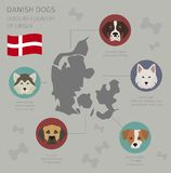 Dogs by country of origin. Danish dog breeds. Infographic templa Royalty Free Stock Image