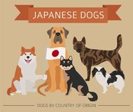 Dogs by country of origin. Japanese dog breeds. Infographic temp. Late. Vector illustration Royalty Free Stock Images