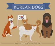 Dogs by country of origin. Korean dog breeds. Infographic templa. Te. Vector illustration Stock Photos
