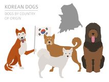 Dogs by country of origin. Korean dog breeds. Infographic templa. Te. Vector illustration Royalty Free Stock Photo