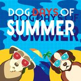 Dog days of summer. Dogs days of Summer Time for adventure. Cute comic cartoon. Colorful humor retro style. Dogs in sunglass enjoy beach fun swimming pool Stock Photos