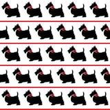 dogs den seamless scottien stock illustrationer