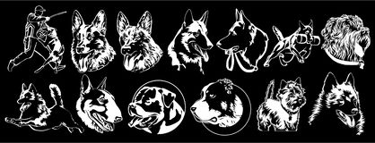 Dogs of different breeds suitable for embroidery stock illustration