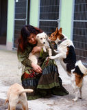 dogs in dog shelter and woman. Animal shelter. Stock Photo