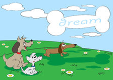 Dogs dream. Dogs look at clouds and dream of meal Stock Photo