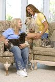Dogs and family Stock Image