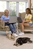 Dogs and family Stock Photos