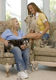 Dogs and family Royalty Free Stock Image