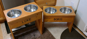 Dogs Feeding Station Royalty Free Stock Image