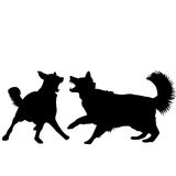 Dogs fight. Silhouettes isolated over white background Stock Photography