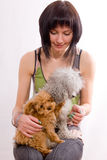 Dogs and the girl Stock Images