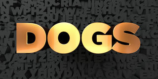 Dogs - Gold text on black background - 3D rendered royalty free stock picture Royalty Free Stock Photography