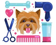 Dogs grooming. Blow-Dry, Cut and Comb vector illustration
