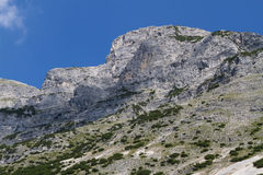 Dogs Head Mountain. Austria, Tirol, Hinterhornalm Stock Photography