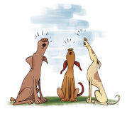 Dogs howling. Humor illustration of three dogs howling