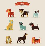 Dogs icons and illustrations Stock Images