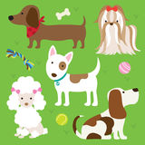 Dogs. Illustration of dogs with toys Stock Photos