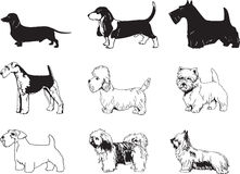 dogs illustrationvektorn Royaltyfri Bild