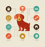 Dogs infographic and icon set Stock Photo