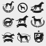 Dogs label and icons set. Vector Royalty Free Stock Image
