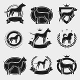 Dogs label and icons set. Vector Stock Photography