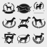 Dogs label and icons set. Vector Royalty Free Stock Photography