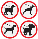 Dogs on lead allowed sign Stock Images