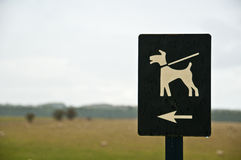 Dogs on leash Stock Photography