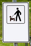 Only dogs on a leash royalty free stock image