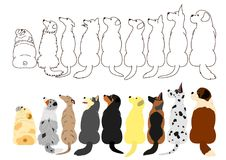 Dogs looking up sideways in a row. Brown line arts and with colors stock illustration
