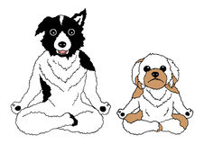 Dogs lotus pose yoga chakra, vector drawing hand drawn funny. Design illustration Royalty Free Stock Images