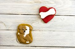 Dogs love to gnaw bones. Composition on a white background. Red heart Royalty Free Stock Images