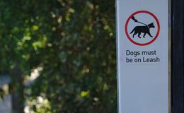 Dogs must be on leash sign royalty free stock photos