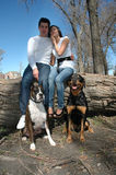 Dogs in a Park. Happy married couple taking pictures with their dogs in the park stock photography