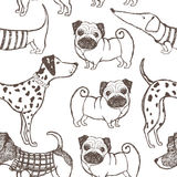 Dogs pattern Royalty Free Stock Image