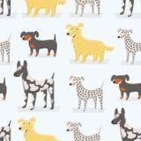 Dogs pattern vector illustration