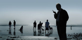 Dogs and people. At the beach Stock Image