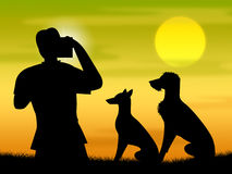 Dogs Photo Royalty Free Stock Images