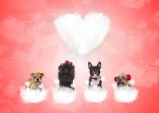 Dogs on puffy clouds with big heart in the background. Four adorable dogs on puffy clouds with big heart in the background, valentine`s day concept Royalty Free Stock Images