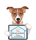 Dogs Resort Hotel advertising, Royalty Free Stock Photography
