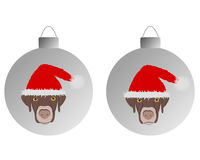 Dogs with santa claus caps on christmas bauble Royalty Free Stock Images