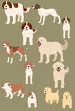 Dogs  set Stock Photo