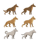Dogs set. On a white background Stock Photos