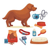 Dogs Set of accessories for dogs. Collection of pet symbol. domestic animal icons bowl, bone, canine food, leash and grooming accessories. Cartoon style Royalty Free Stock Photography