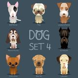 Dogs Set 3. Vector breed of dogs Stock Images